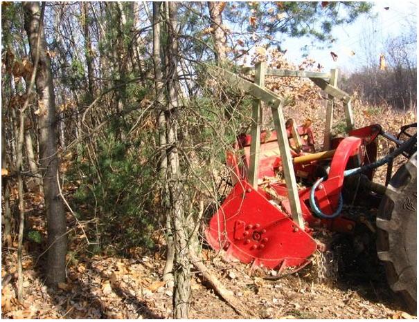 Лесной мульчер для трактора SEPPI MIDIFORST dt