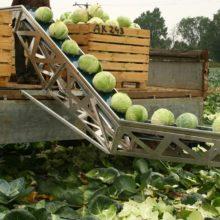 Транспортер для уборки овощей